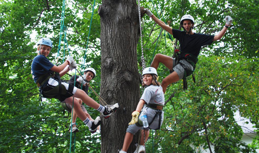 RECREATIONAL TREE CLIMBING EPUB